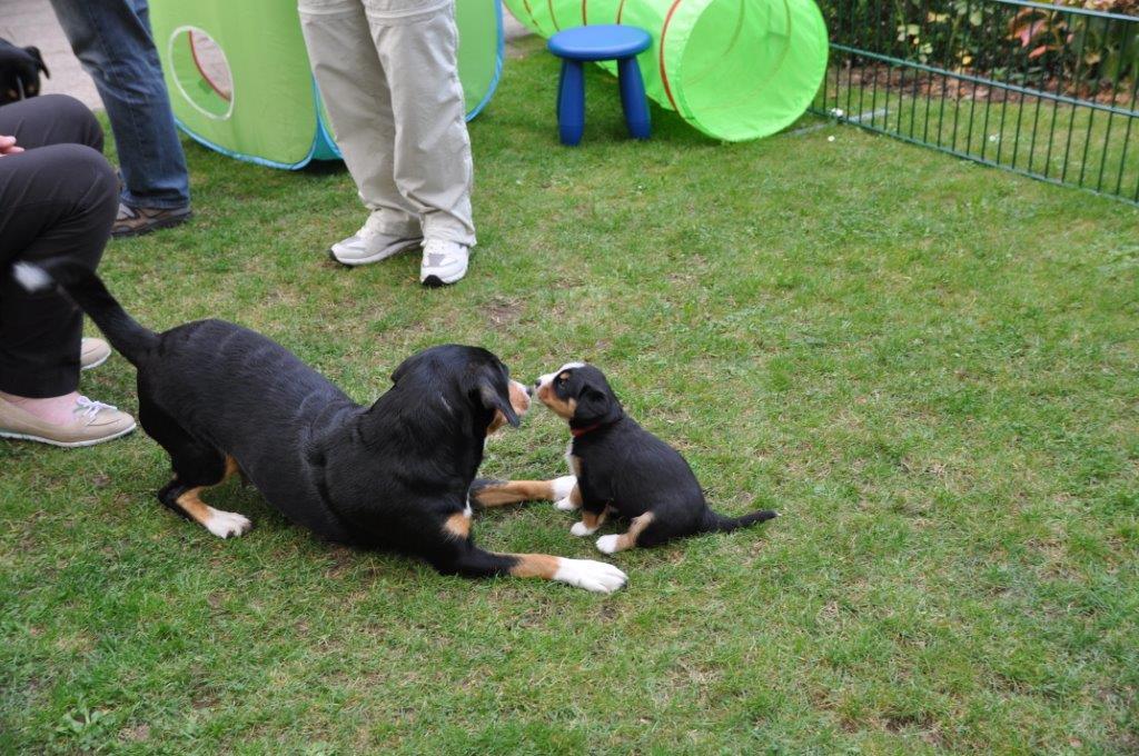 2014-09-DSC_7427 Spielen mit Mama