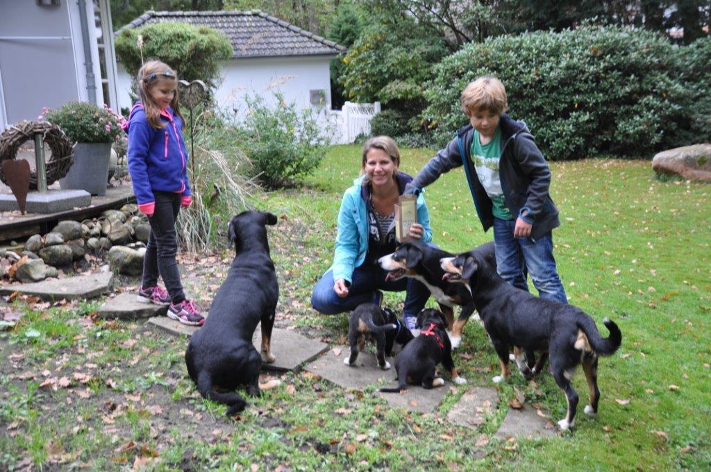 2014-10-DSC_8293 Melanie & 5 Hunde