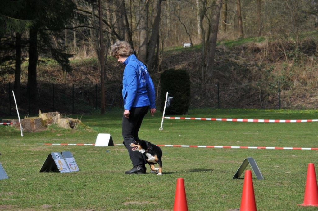 2016-Q1-GHV-Walddoerfer_RO-Turnier_2016-04-02_5_Klasse1-u-Senioren (64)